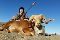 Chase Redding Damara Sheep